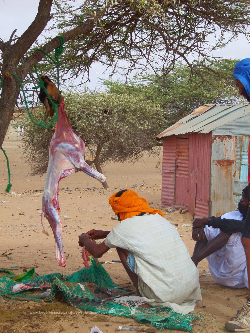 A goat being prepared, nothing's wasted.
