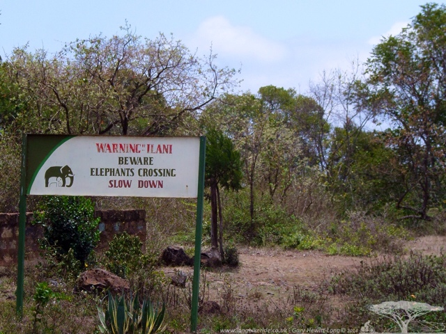 Warning - Elephants Crossing - But I didn't see them :-(