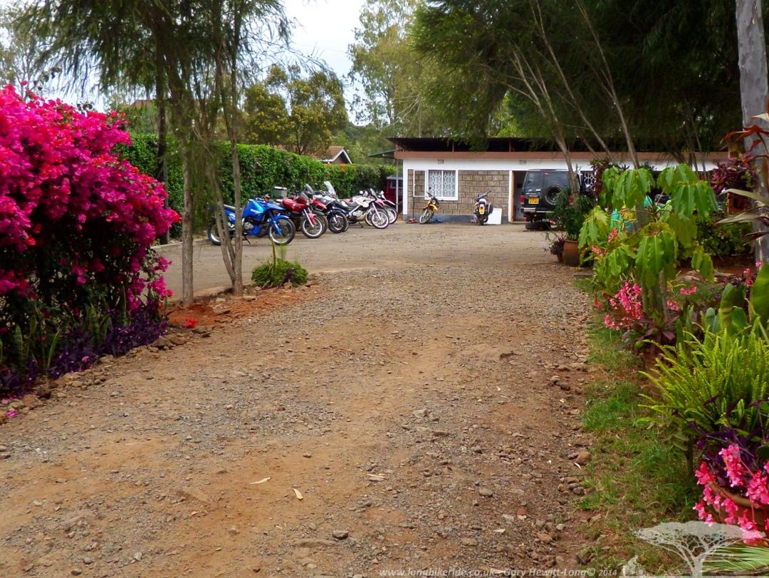 Jungle Junction campsite