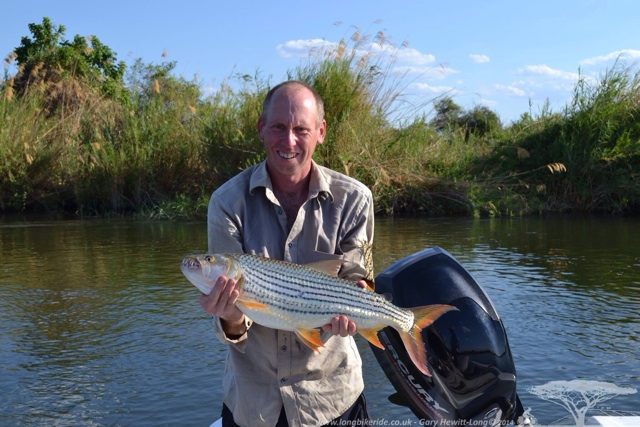 My first African Tiger Fish - 4.5kg