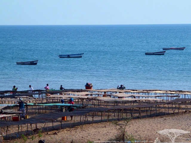 Fishing boats and Chambo being dried on Lake Malawi