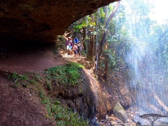 Behind Mantchewe Falls, Livingstonia, Milawi