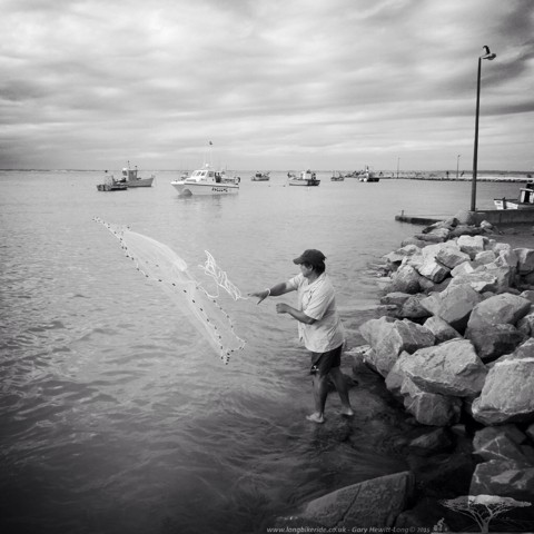 Catching Bait fish with a throwing net in Struisbaai harbour